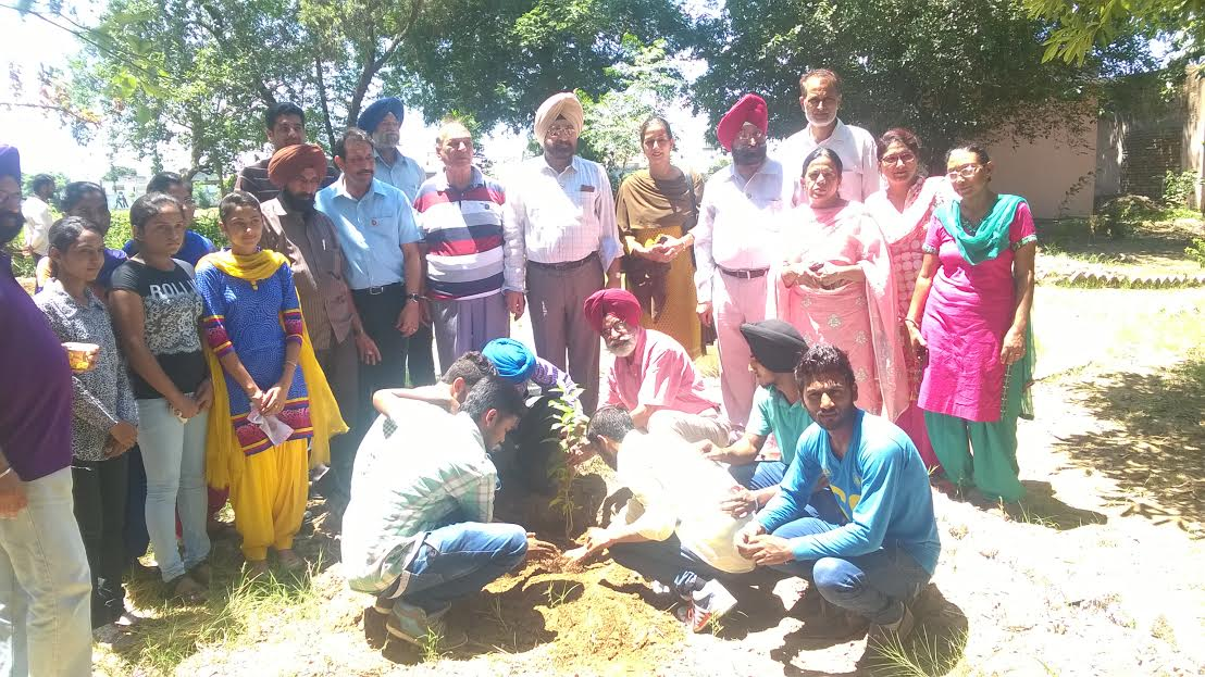 Herbal Plantation by the members of Alianz Club and Science and Environment Society